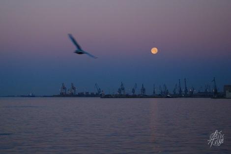 Puerto de Salónica