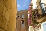 Flores en Mdina