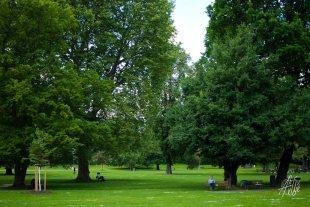 Descanso parque