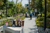 Café en el parque