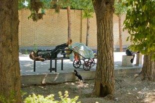 Un hombre descansa en las calles de Shiraz